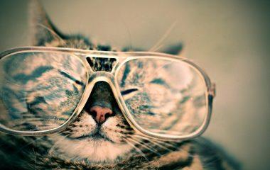 Lentes de óculos de grau mais finas: como conseguir?